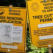 Tree Removal Permits 1